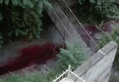 Απίστευτο γεγονός : Τρέχει αίμα σε ποτάμι της Θεσσαλονίκης