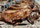 Παραπολιτικά : H ΔΗΚΕ Λαγκαδά δίδωμι την Κρεατοφαγία
